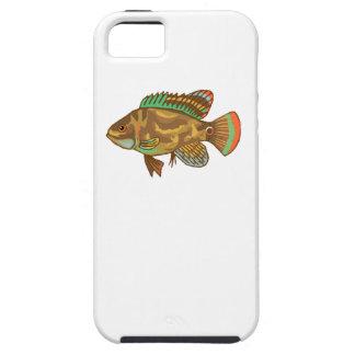 Pescados de Óscar iPhone 5 Carcasas