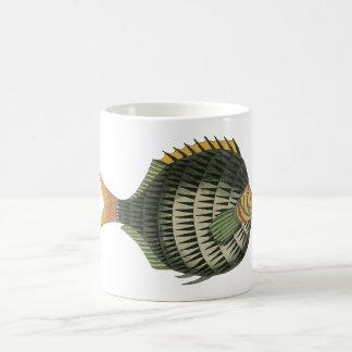 Pescados de puerco espín tazas de café