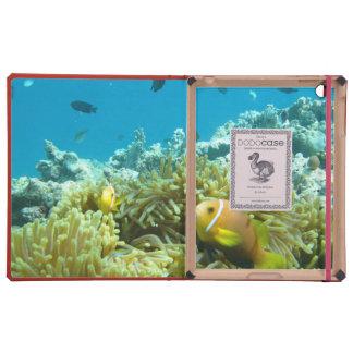 Pescados del acuario iPad cobertura