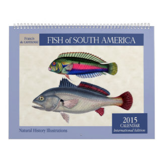 Pescados del calendario de pared de Suramérica 201