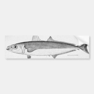 Pescados del cigarro pegatina de parachoque