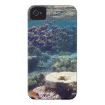 Pescados del cirujano de los azules claros iPhone 4 funda