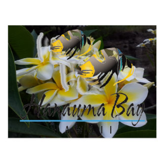 Pescados del estado de Hawaii - flores del Plumeri Postales