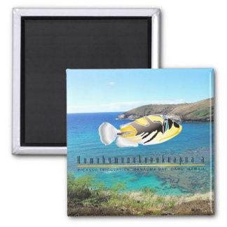 Pescados del estado de Hawaii - Humuhumunukunukuap Imán Cuadrado