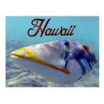Pescados del estado de Hawaii - Humuhumunukunukuap Tarjeta Postal