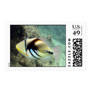 Pescados del estado de Hawaii - Timbre Postal