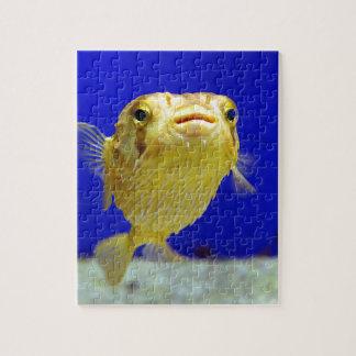 Pescados del fumador puzzle con fotos