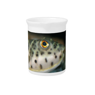 pescados del fumador que hacen frente a eye.jpg am jarra para bebida