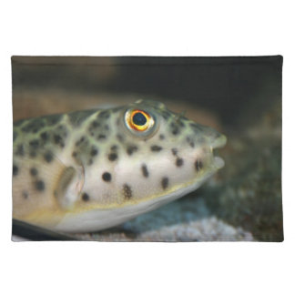 pescados del fumador que hacen frente a eye.jpg am mantel