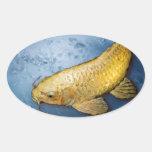 Pescados del koi de Japón Pegatina Ovalada