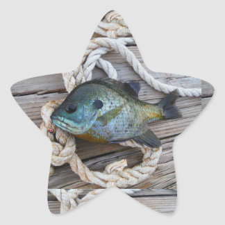 Pescados del Lepomis macrochirus en muelle y Pegatina En Forma De Estrella