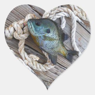 Pescados del Lepomis macrochirus en muelle y Pegatina En Forma De Corazón