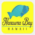 Pescados del loro de Hawaii de la bahía de Hanauma Colcomania Cuadrada