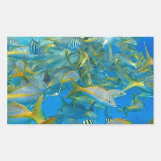 Pescados del océano rectangular altavoz