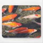 Pescados del oro tapetes de raton