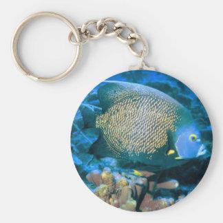 Pescados del Pomacanthus Llavero Redondo Tipo Pin