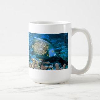 Pescados del Pomacanthus Taza De Café