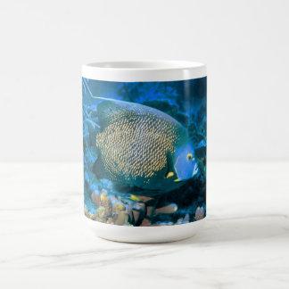 Pescados del Pomacanthus Tazas De Café