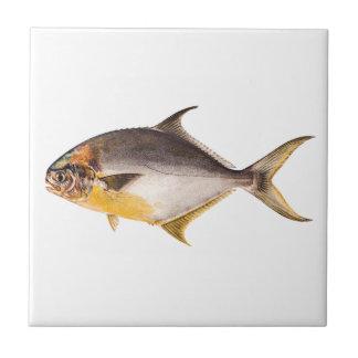 Pescados del pompano del vintage - espacio en blan azulejo cuadrado pequeño