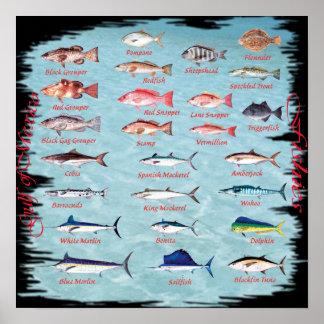 Pescados del poster del golfo