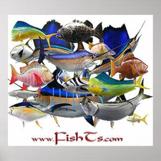 Pescados del poster Golfo-Enorme