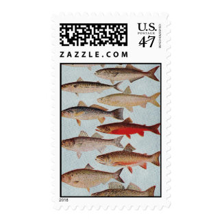 Pescados del vintage timbre postal