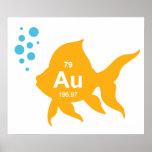Pescados elementales del oro de la tabla periódica poster
