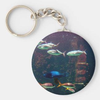 Pescados en acuario llaveros