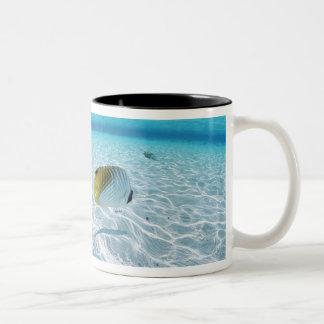 Pescados en el mar 2 taza de dos tonos