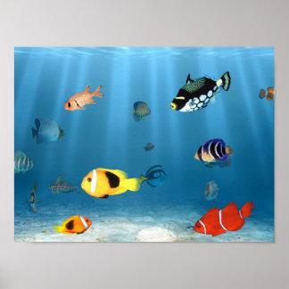 Pescados en el océano poster