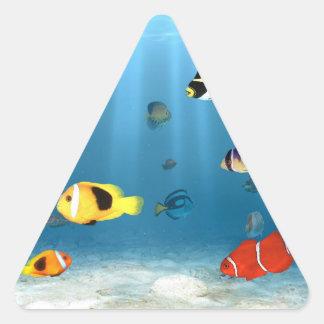 Pescados en el océano pegatina triangular