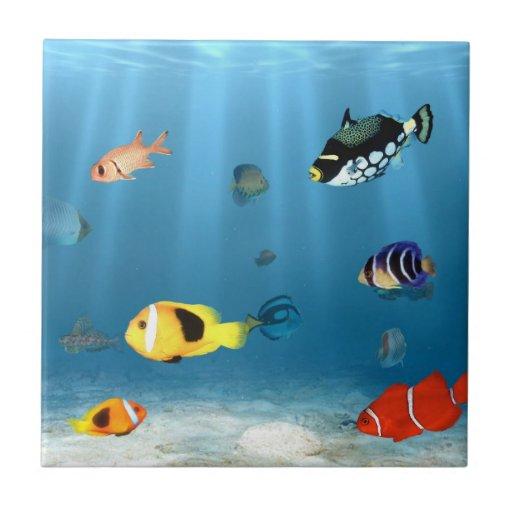 Pescados en el océano teja  ceramica