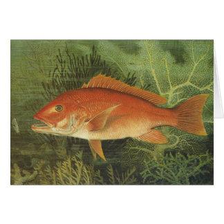 Pescados en el océano, vida marina del pargo rojo tarjeta de felicitación