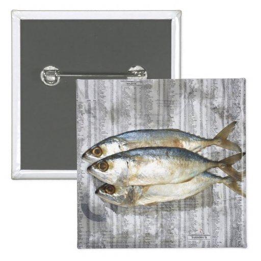 Pescados en el periódico financiero, visión elevad pin