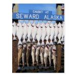 Pescados en Seward, Alaska Postal
