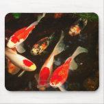 ¡Pescados en un cojín de ratón! Mouse Pads