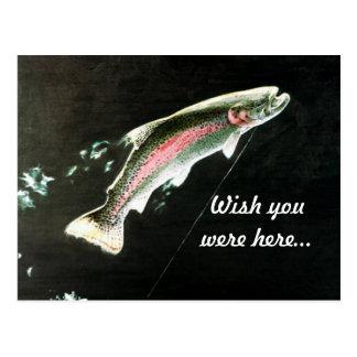Pescados enganchados de la trucha arco iris tarjeta postal