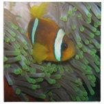 Pescados exóticos del payaso servilleta