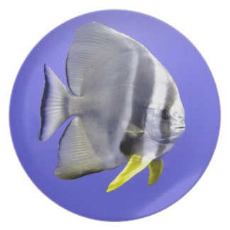 Pescados exóticos tropicales del Batfish Platos Para Fiestas