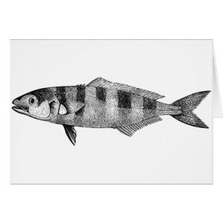 Pescados experimentales tarjeta