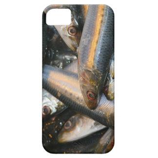 pescados funda para iPhone SE/5/5s