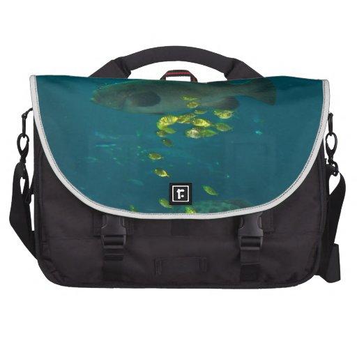 Pescados grandes bolsas de portatil