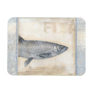Pescados grises en fondo beige iman