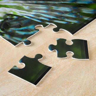 Pescados gruñones puzzles con fotos