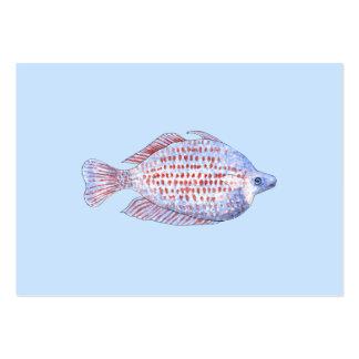 Pescados. Línea roja Rainbowfish. Plantillas De Tarjetas De Visita