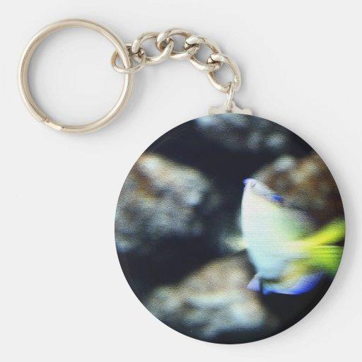 Pescados Llavero Redondo Tipo Pin