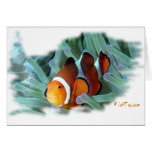 Pescados marinos del acuario por FishTs.com Felicitación