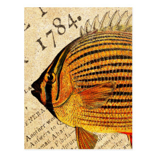 Pescados modificados para requisitos particulares postales