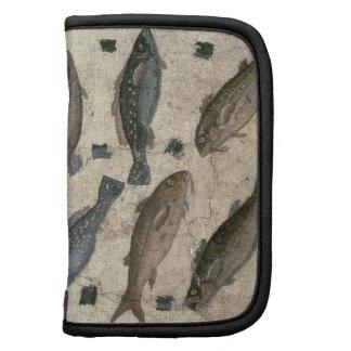 Pescados (mosaico) organizador