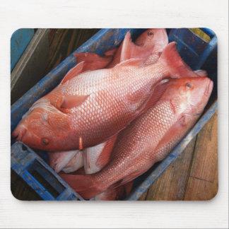Pescados Mousepad del pargo rojo